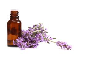 lavendar_oil